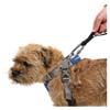 Mountain Paws Dog Harness