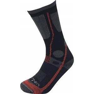 Lorpen All Season Trekker Sock
