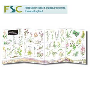 FSC Fold-out Chart - Moorland Plants
