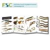 FSC Fold-out Chart - Reptiles and Amphibians