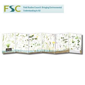 FSC Fold-out Chart - Water Plants