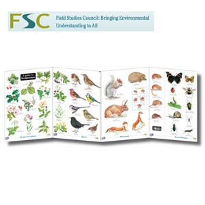 FSC Fold-out Chart - Hedgerows