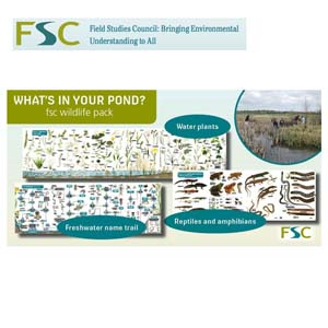 FSC Wildlife Pack - What's In Your Pond?