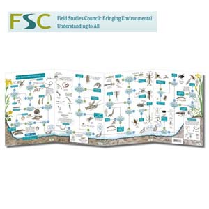 FSC Fold-out Chart - Freshwater Name Trail